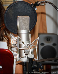 Voice Over recording, narration, animation, adr, spanish